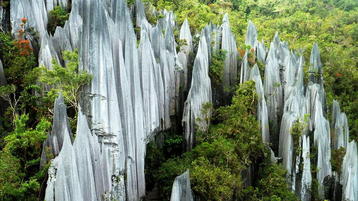 4 Tempat Wisata Populer Di Penang, Malaysia
