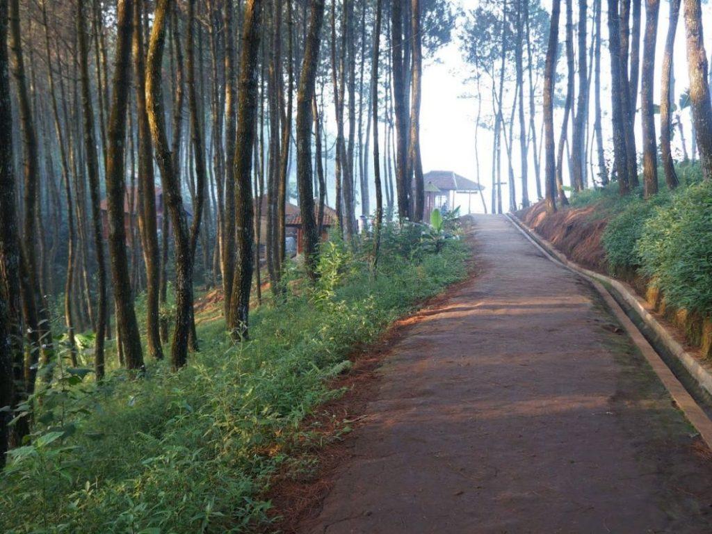 Bukit Bintang Bukit Moko Cimenyan