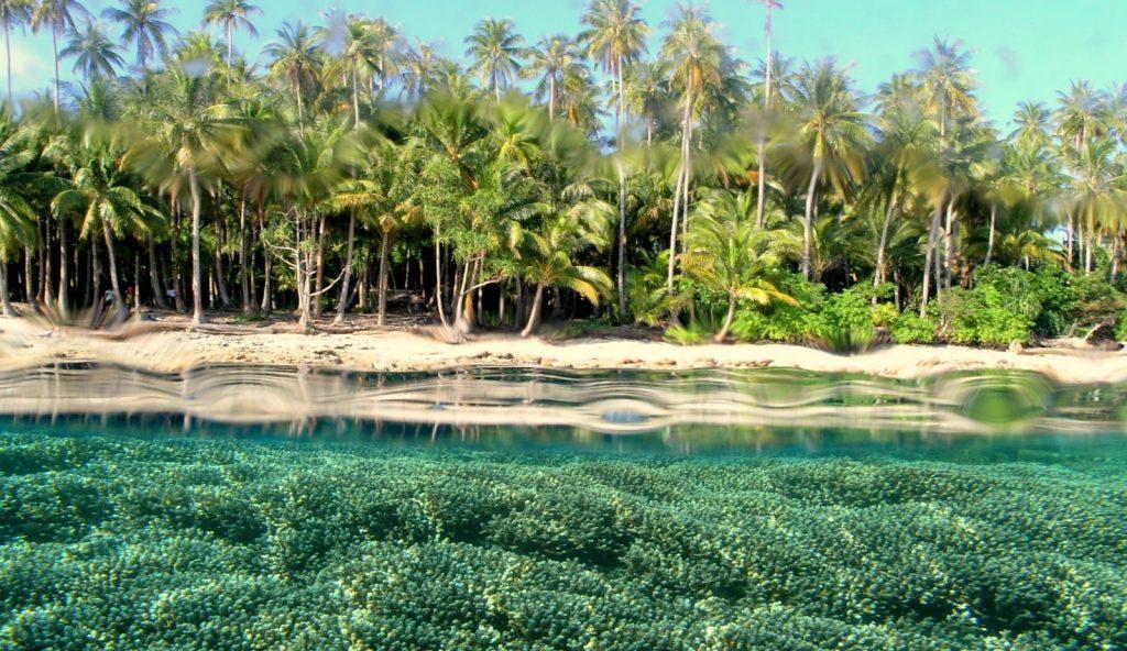 Kepulauan Padaido Biak Utara