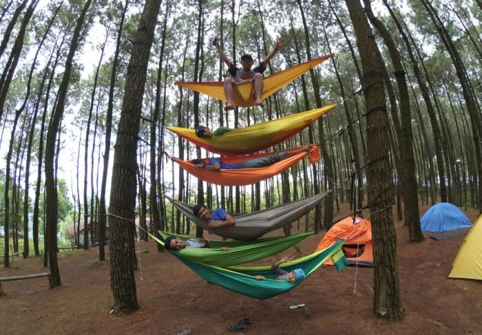 Wisata Hammock Hutan Pinus Mangunan