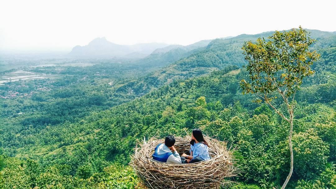 Wisata SAngkar Burung Bukit-Jomblo