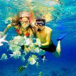 7 Wisata Snorkeling Asik di Nusantara