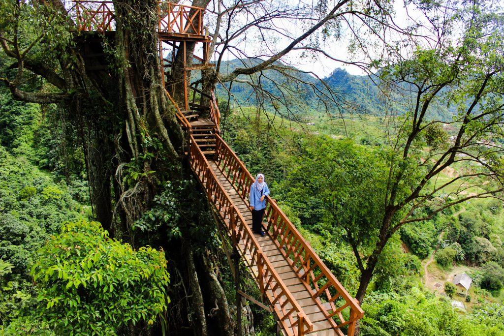 Gardu Pandang Rumah Pohon Curug Ciherang