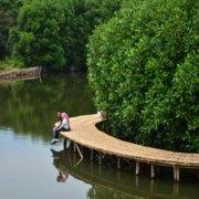 10 Tempat Wisata Romantis Di Semarang Yang Membuat Pasanganmu Makin Cinta !